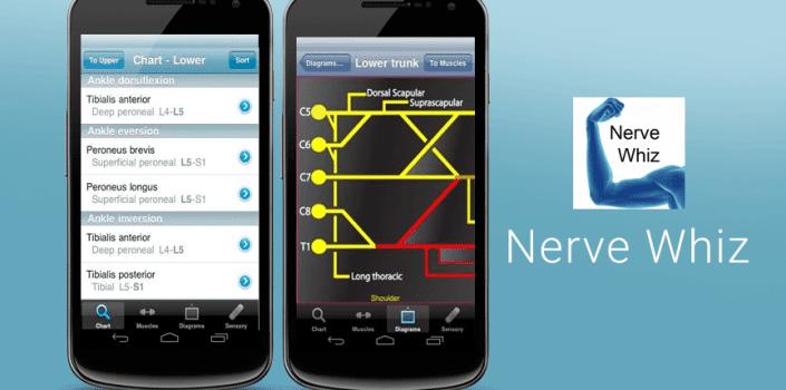 Nerve-Whiz-705x3501
